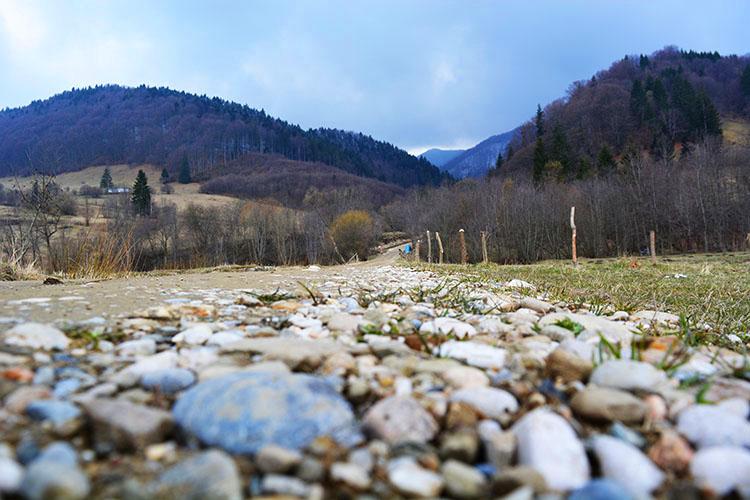 Holiday and Trips Vama Buzaului