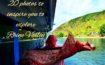 20 photos to inspire you to explore Rhine Valley