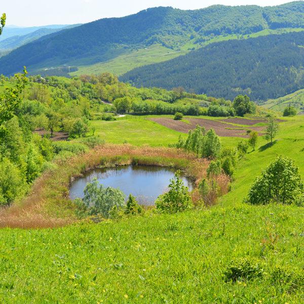 Castelului Lake – Meledic Plateau, Buzau, Romania