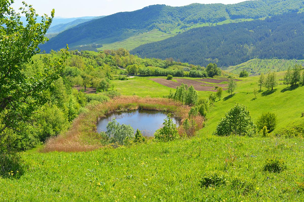 Castelului Lake, Meledic Plateau, Buzau