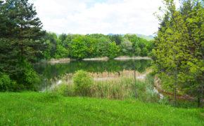 Meledic Lake, Buzau, Romania