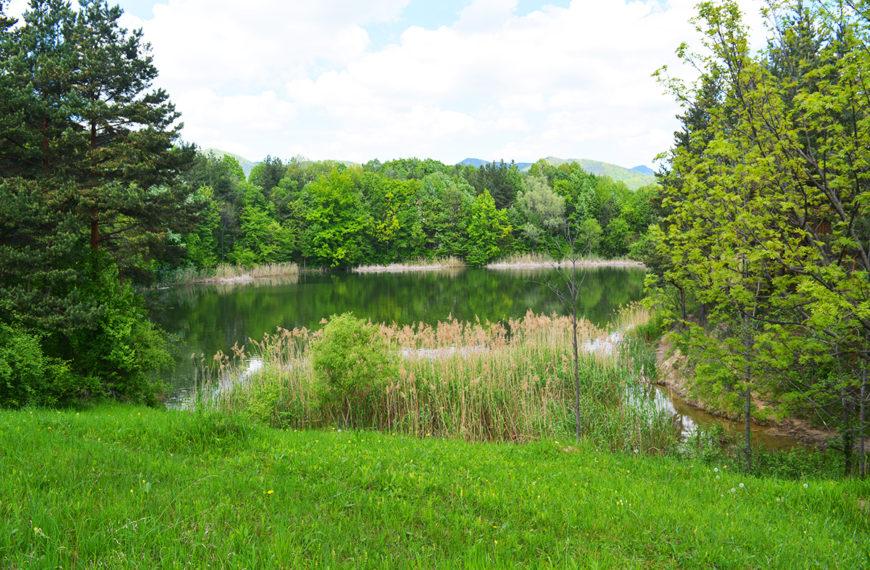 Lacul Meledic – un lac perfect cu fundul sigilat in Buzau, Romania