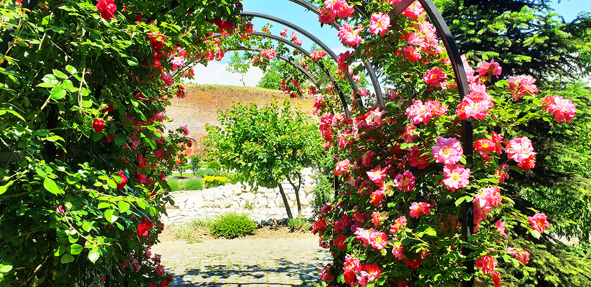 The Japanese Garden – Alba Carolina Citadel