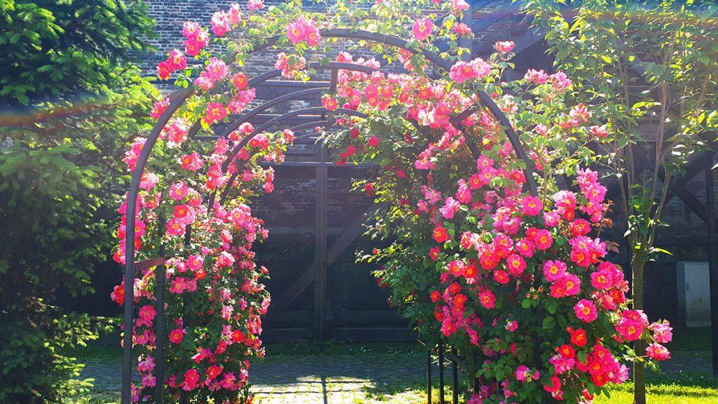 The Japanese garden, Alba Carolina, Romania